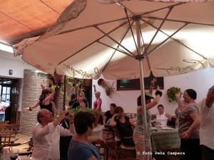 FlamencoPaterna (102)