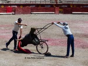 Mex2015 (68)
